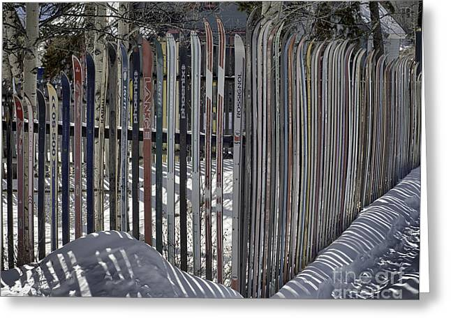 Ski Fence Greeting Card