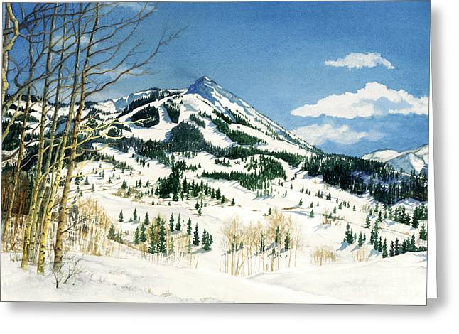 Skiers Paradise Greeting Card by Barbara Jewell
