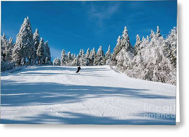 Skiers Paradise Greeting Card