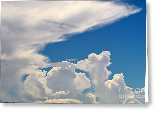 Skies-nature Greeting Card by Sarah Loveland