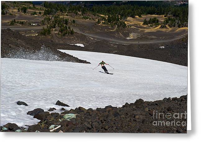 Skiing Bachelor In August Greeting Card by Jackie Follett