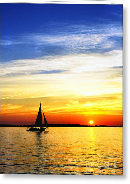 Skipjack Under Full Sail At Sunset Greeting Card