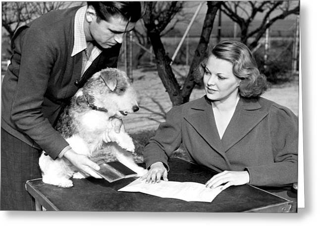 Skippy Signs Contract Greeting Card by Underwood Archives
