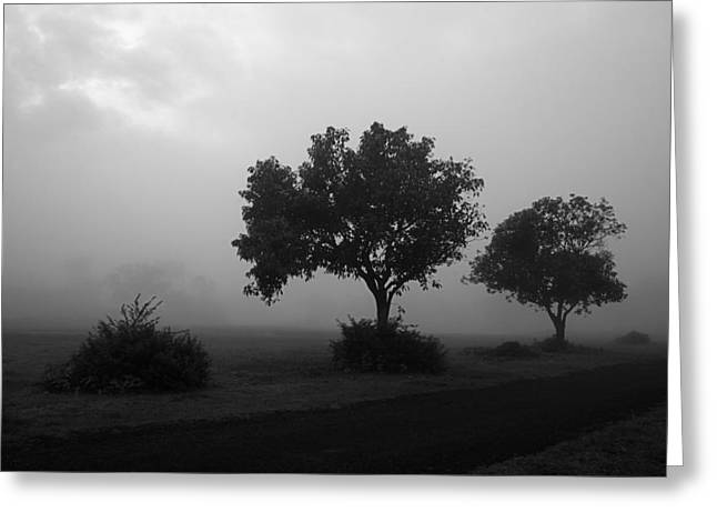 Greeting Card featuring the photograph Skc 0074 A Family Of Trees by Sunil Kapadia