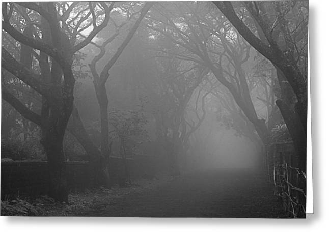 Greeting Card featuring the photograph Skc 0077 A Romatic Path by Sunil Kapadia