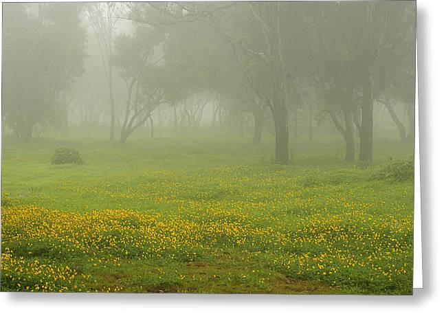 Greeting Card featuring the photograph Skc 0835 Romance In The Meadows by Sunil Kapadia