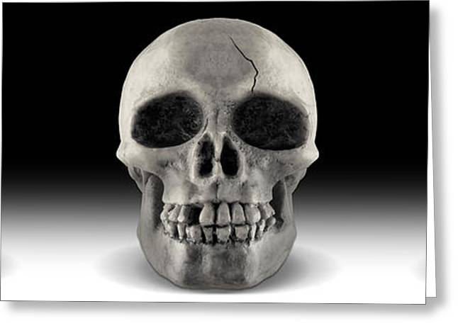Skull 4 Panoramic Greeting Card by Mike McGlothlen