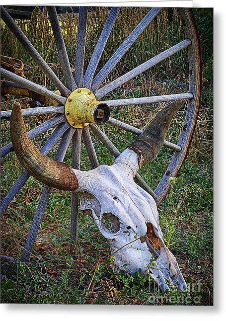 Skull Among The Living Greeting Card by Priscilla Burgers