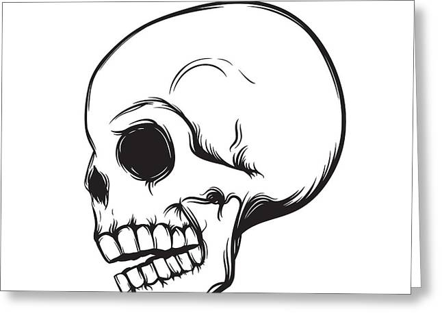 Skull, Side View, Isolated On White Greeting Card