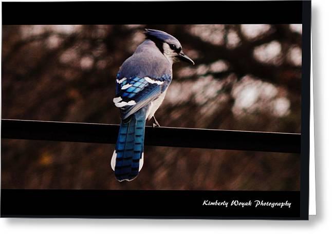 Sky Blue Wings Greeting Card