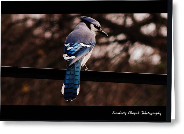 Sky Blue Wings Greeting Card