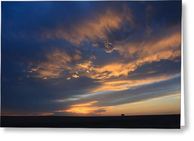 Greeting Card featuring the photograph Sky In Blue by Shirley Heier