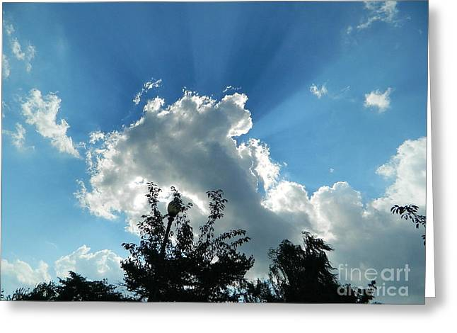Greeting Card featuring the photograph Sky Phenomenon At Hains Point by Emmy Marie Vickers