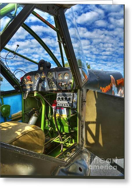 Sky Pilot Greeting Card by Mel Steinhauer