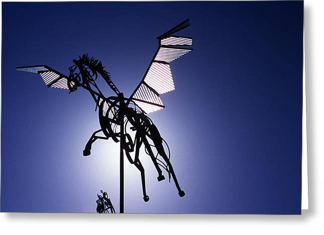 Skyhorse Greeting Card by Bernard  Barcos