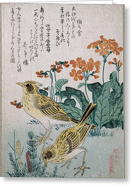 Skylarks And Primroses  Greeting Card by Kubo Shunman