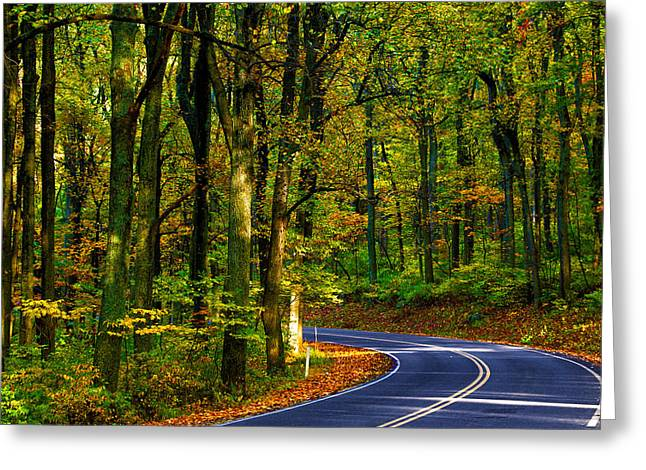 Skyline Drive Greeting Card by Mitch Cat