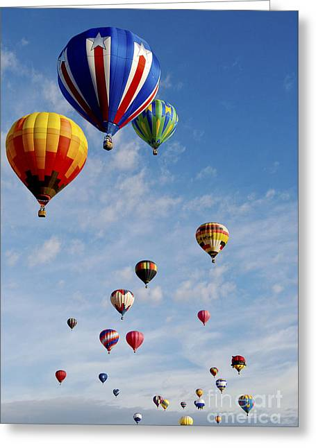 Greeting Card featuring the photograph Skyward Bound by Gina Savage