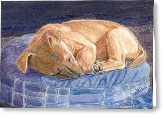Sleeping Puppy Greeting Card