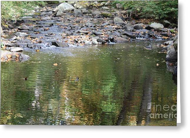 Sleepy Hollow Cemetery Stream Greeting Card by John Telfer