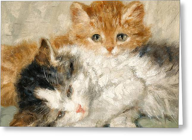Sleepy Kittens Greeting Card by Henriette Ronner-Knip