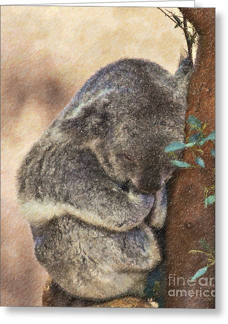 Sleepy Koala Greeting Card