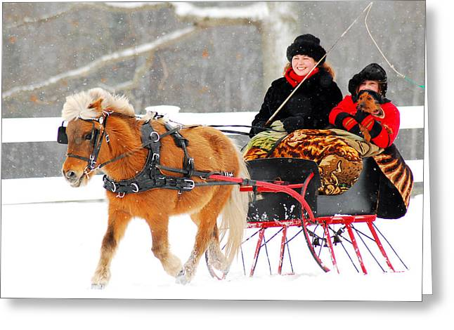 Greeting Card featuring the photograph Sleigh Ride by James Kirkikis