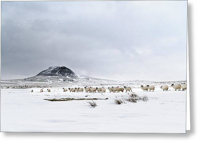 Slemish Mountain In Winter Northern Ireland Greeting Card
