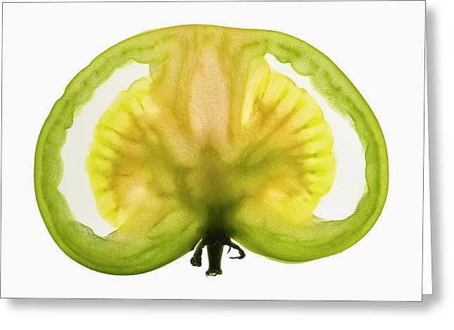 Slice Of Green Tomato, Backlit Greeting Card
