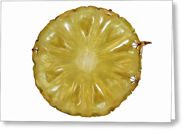 Slice Of Pineapple, Backlit Greeting Card