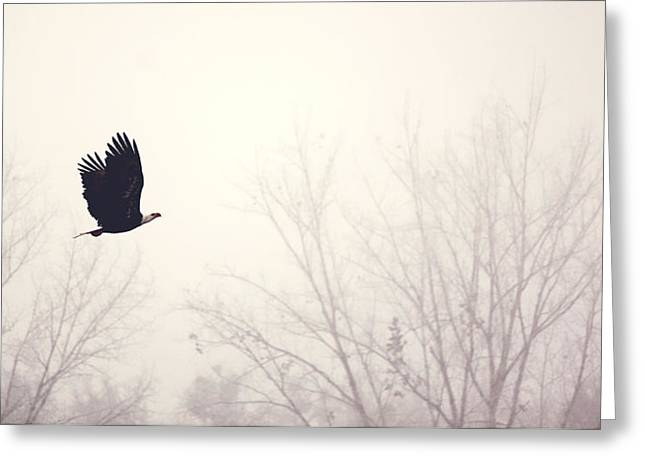 Slicing Through The Fog Greeting Card by Melanie Lankford Photography