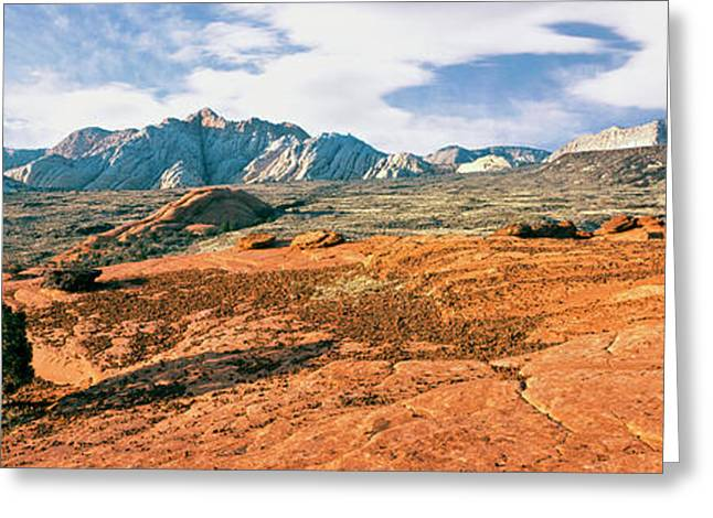 Slickrock, Snow Canyon State Park Greeting Card by Panoramic Images