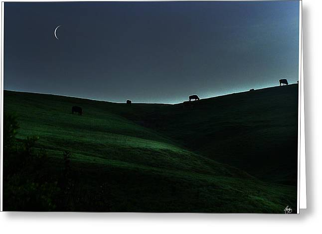 Sliver Of Light On The Pasture Greeting Card