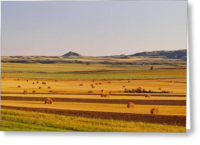 Slope Country Nd Usa Greeting Card by Panoramic Images