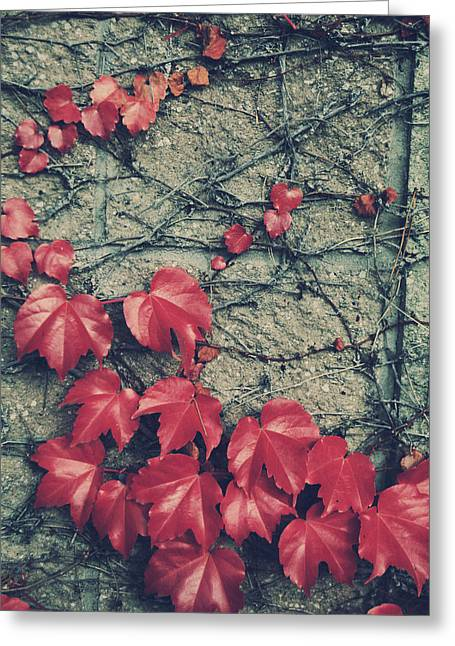 Slowly Dying Greeting Card by Laurie Search
