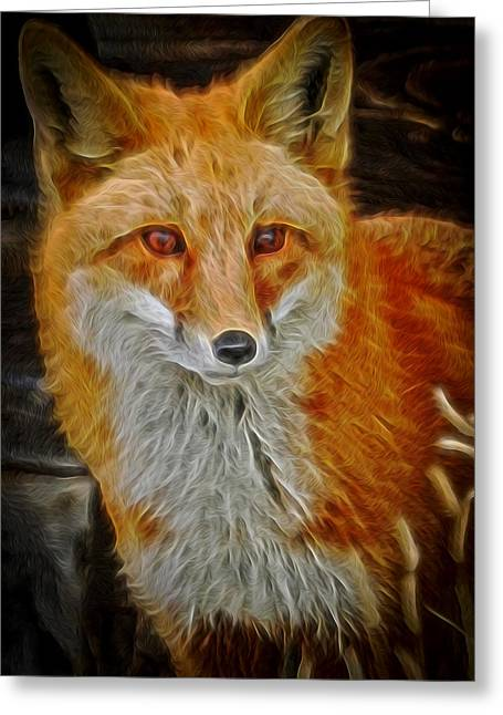 Sly Fox 2 Greeting Card by Ernie Echols