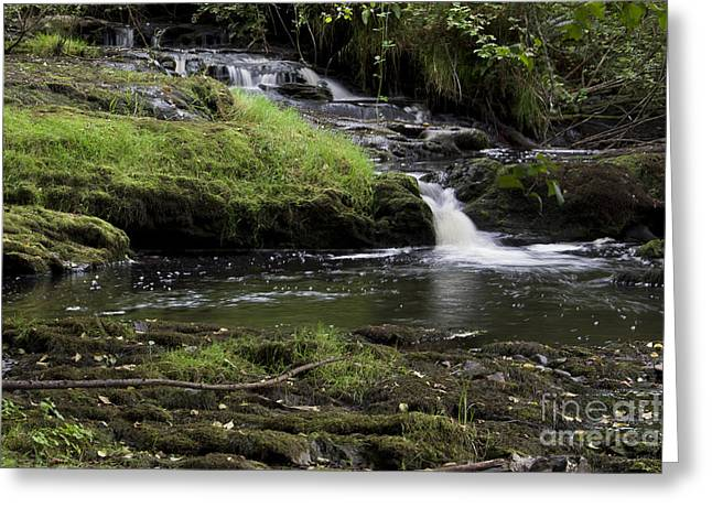 Small Falls On West Beaver Creek Greeting Card by Kathy McClure
