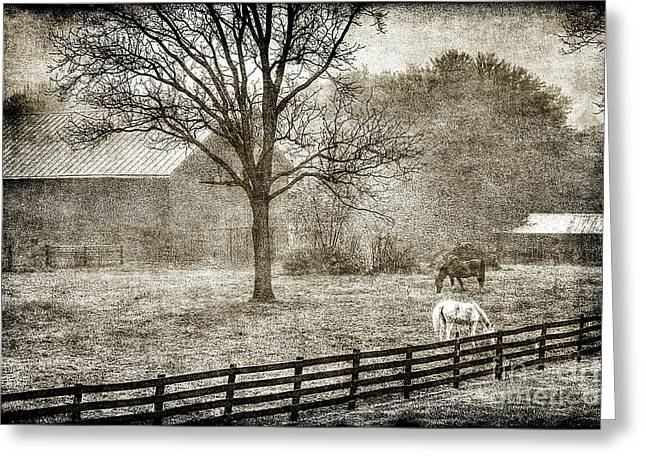 Small Farm In West Virginia Greeting Card by Dan Friend