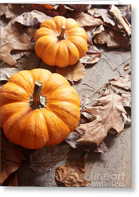 Small Pumpkins On Fall Leaves Greeting Card by Sandra Cunningham
