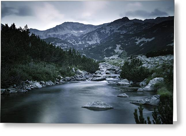 Small River In The Mountains Of Pirin Greeting Card by Evgeny Kuklev