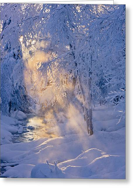 Small Stream In A Hoar Frost Covered Greeting Card