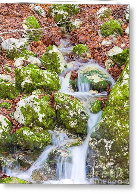 Small Waterfall Greeting Card by Gabriela Insuratelu