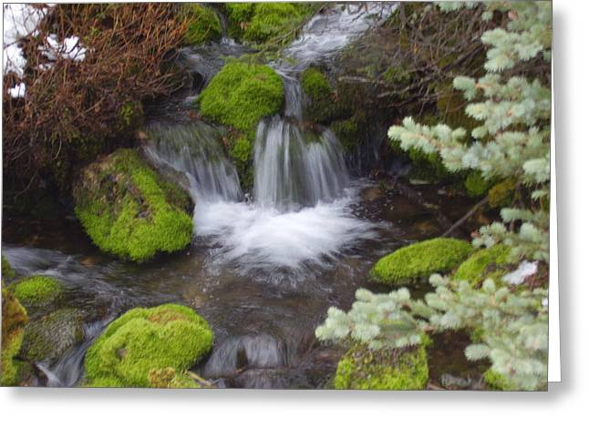 Small Waterfalls Greeting Card by Yvette Pichette
