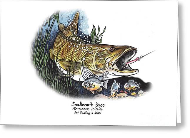 Smallmouth Bass Greeting Card