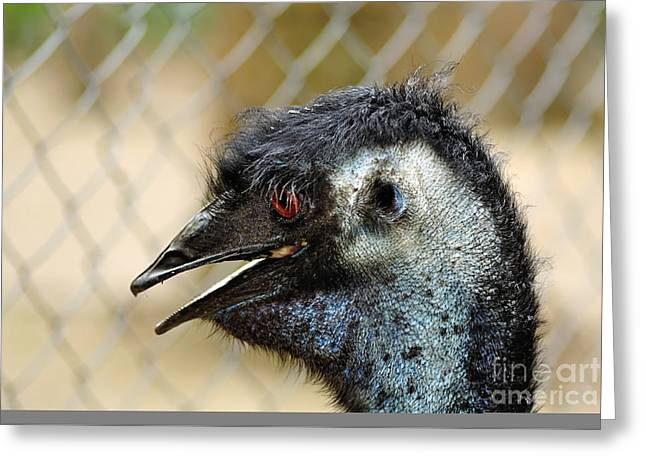 Smiley Face Emu Greeting Card by Kaye Menner