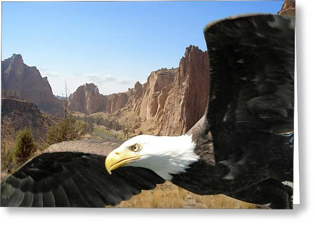 Smith Rocks Eagle Greeting Card
