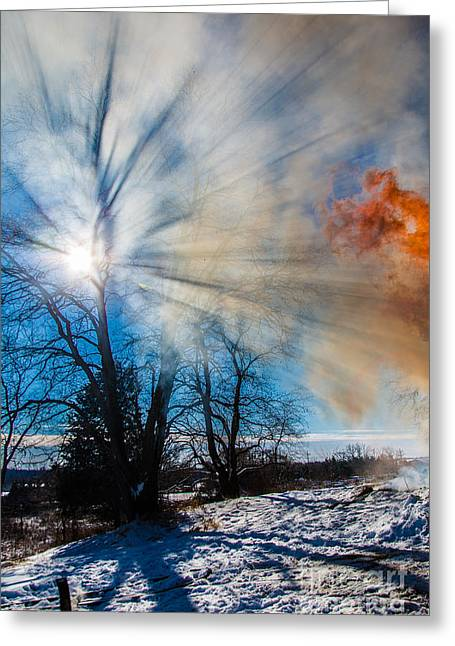 Smoke Thru The Trees Greeting Card