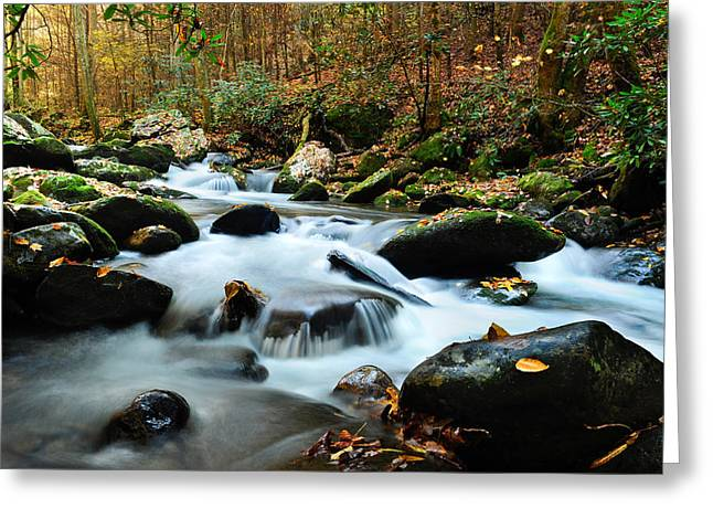 Smokey Mountain Creek Greeting Card