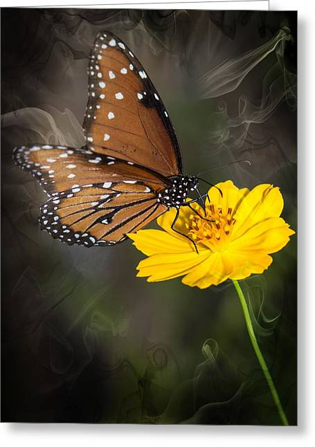 Smoking Beauty Butterfly Greeting Card by Michael Moriarty