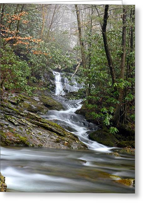 Smoky Mountain Beauty Greeting Card